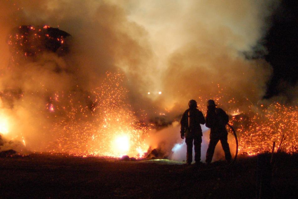 Die Feuerwehr wurde zu seinem Brand in einer Stahlbaufirma in Schönefeld gerufen. (Symbolbild)