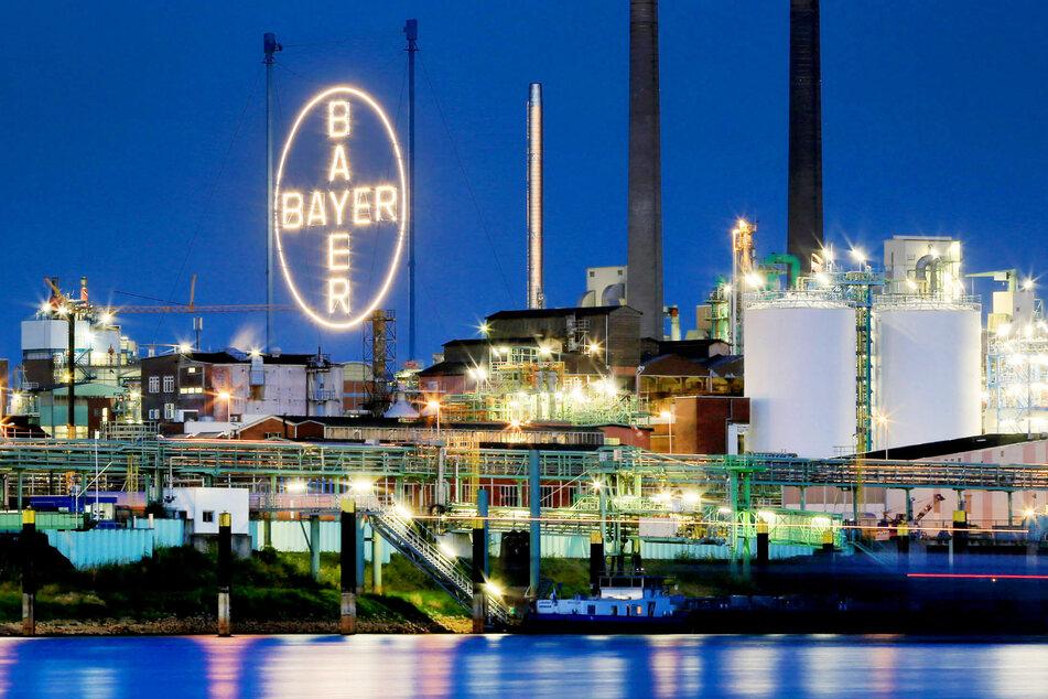 Das Bayer Werk in Leverkusen, fotografiert vom Rheinufer in Köln.