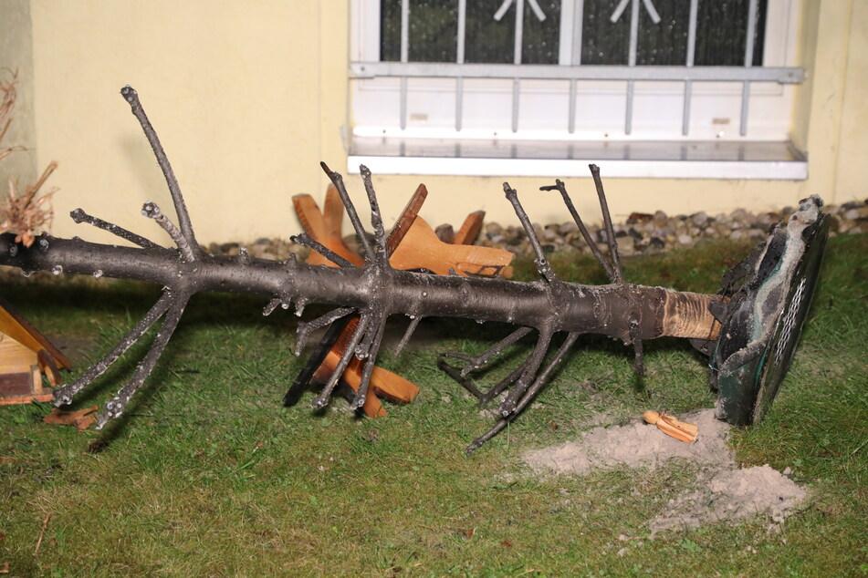 Das war einmal ein Weihnachtsbaum, doch nach dem Brand ist nicht mehr viel von der Tanne übrig geblieben.