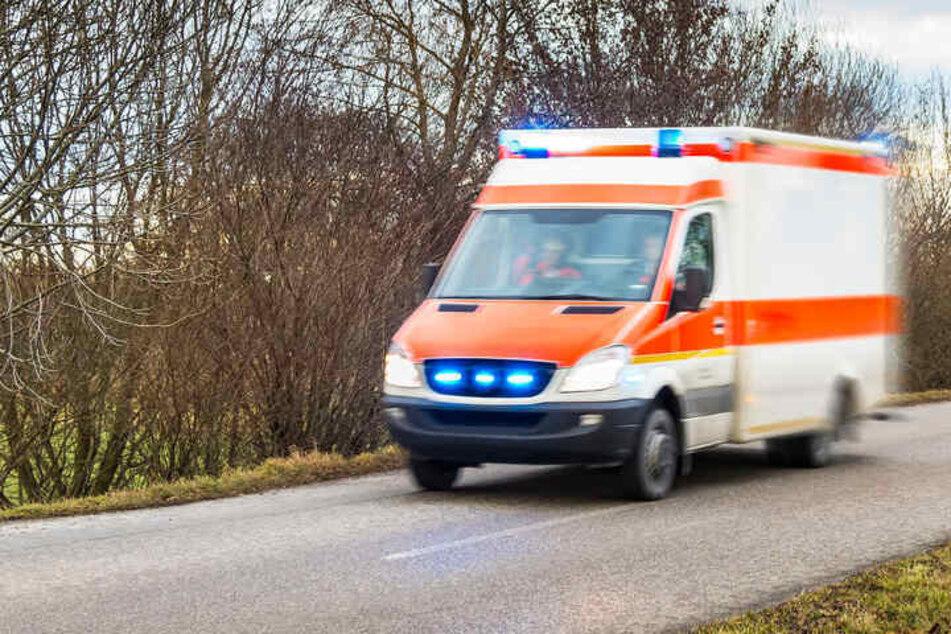 Der Mann starb bei dem Unfall auf der Landstraße 17. (Symbolbild)