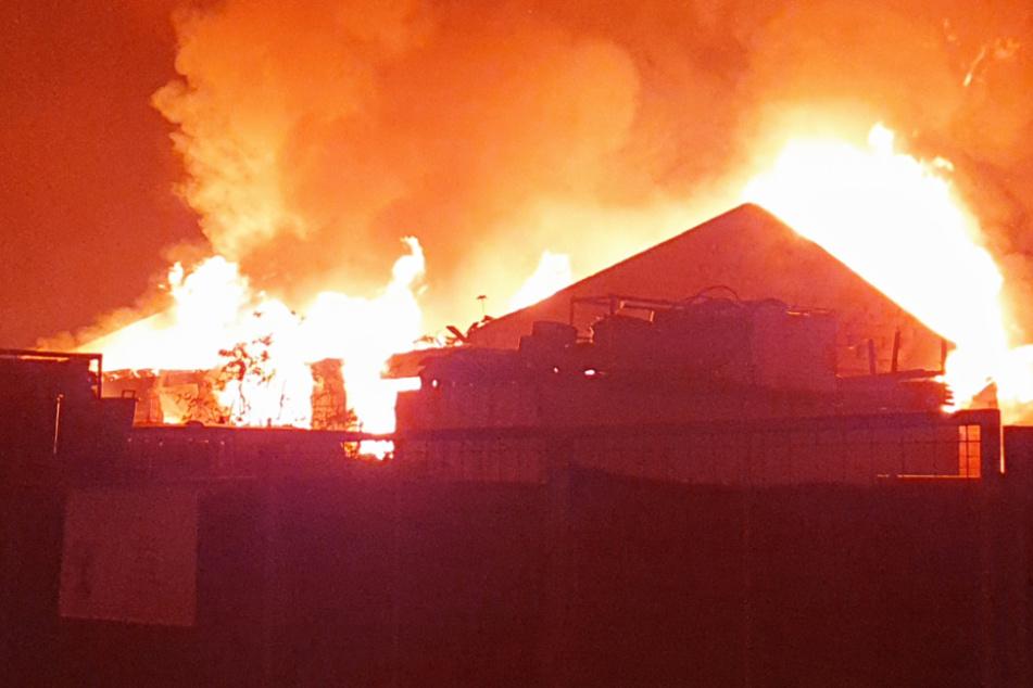 Eine Lagerhalle in Grünstadt in Rheinland-Pfalz brannte am Mittwochabend lichterloh.