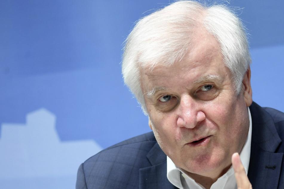 Bundesinnenminister Horst Seehofer (71). (Archivbild)