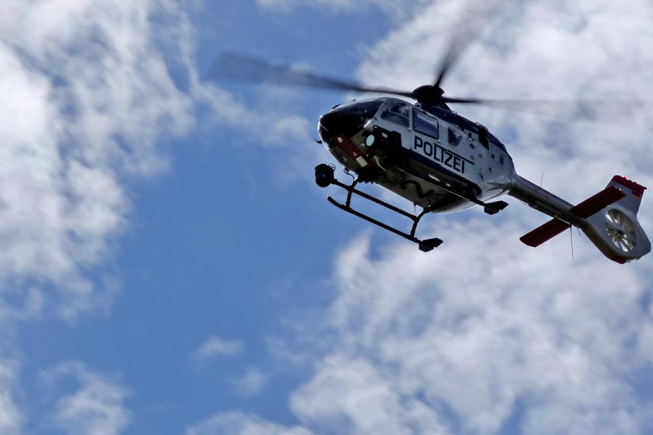 Tödliche Verfolgungsjagd: Polizei zieht wegen entlaufenem Rind alle Register