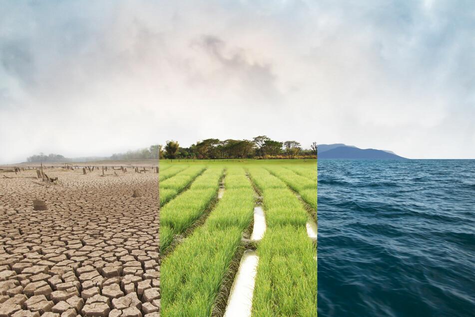 Klima News