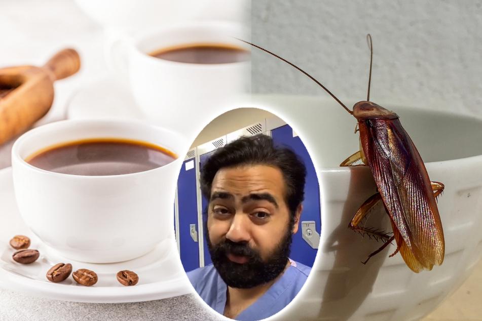 Arzt schockiert Follower: Kaffee enthält gemahlene Kakerlaken!