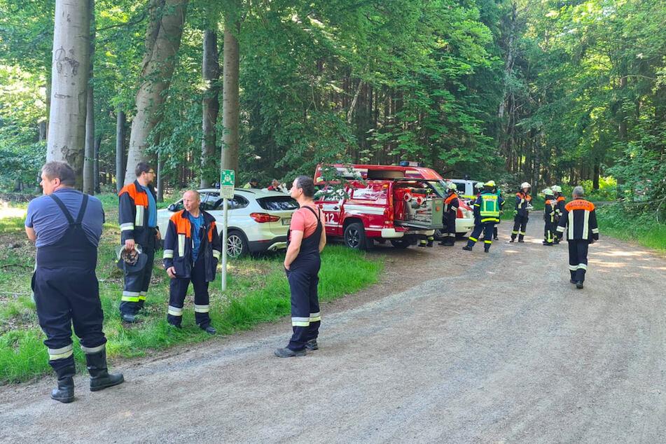 Einsatzkräfte stehen in dem Waldstück, in dem ein Kleinflugzeug abstürzte.