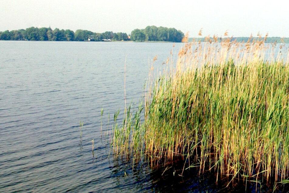 Mitte dreißigjähriger Mann tot im Wandlitzsee gefunden!