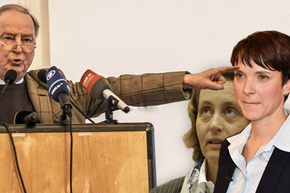 AfD-Vize distanziert sich von Chefin Petry
