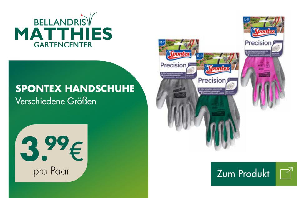 Spontex Handschuhe für 3,99 Euro