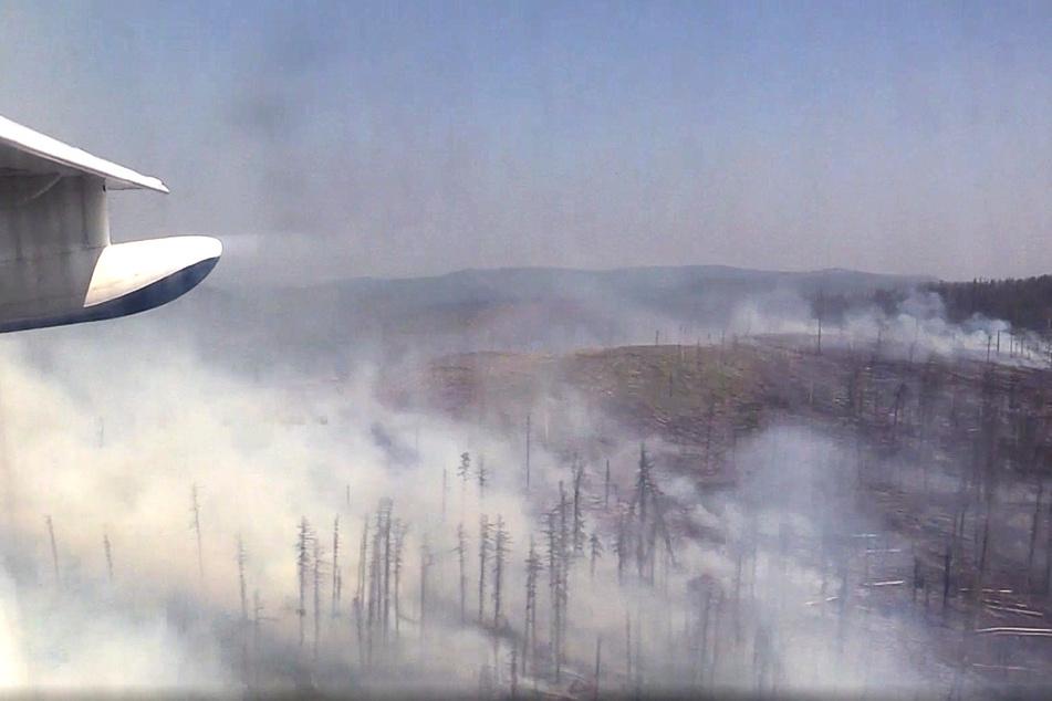 Qualm steigt von einem Waldbrand in der Reghion Krasnojarsk auf (undatierte Aufnahme aus einem Flugzeug, Archiv).