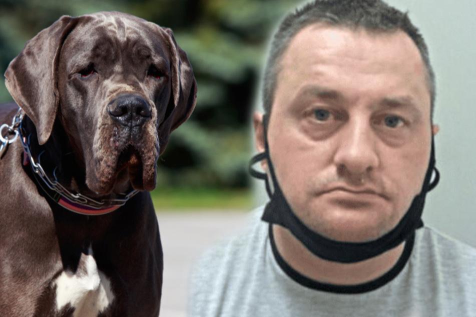 Zweifacher Vater vergewaltigt Hund mehrfach und erzählt, wie der reagierte!