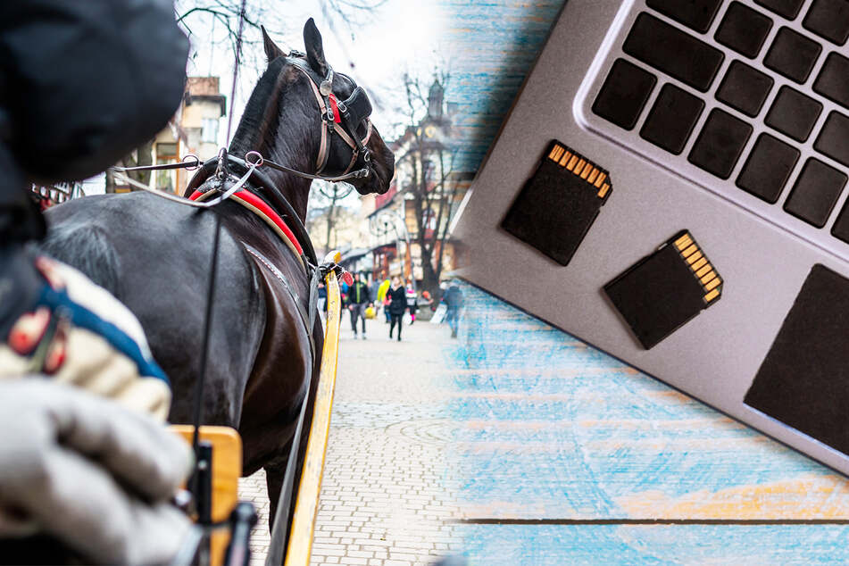 4,5 GB Fotos: Wie kommen die Daten schneller in die Druckerei - mit Pferd oder übers Internet?