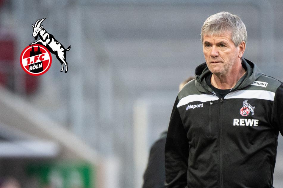 FC-Trainer Funkel überzeugt: Baumgart sei gute Entscheidung für Köln