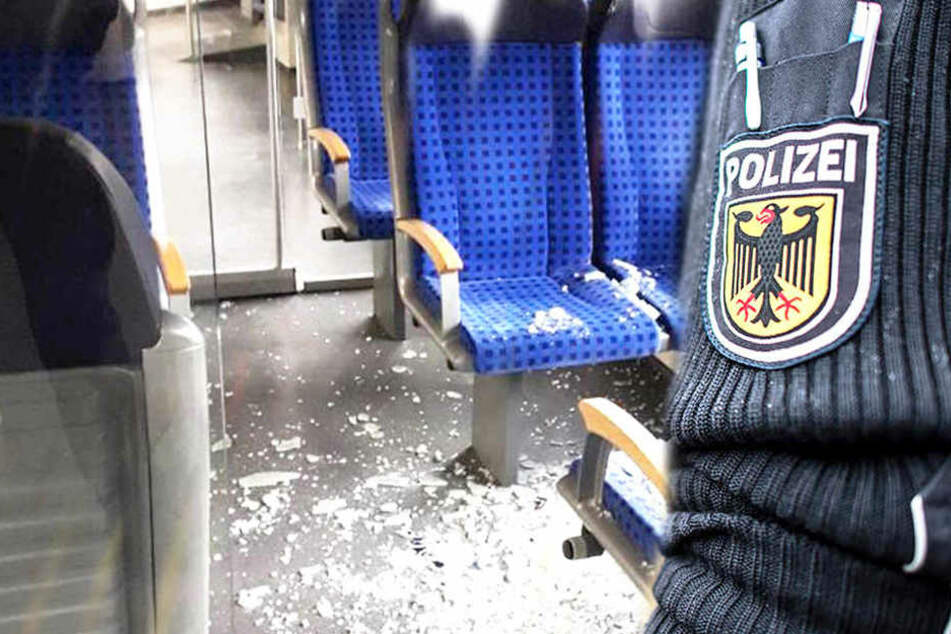 Verwüstung in S-Bahn! Polizei schnappt Chaoten