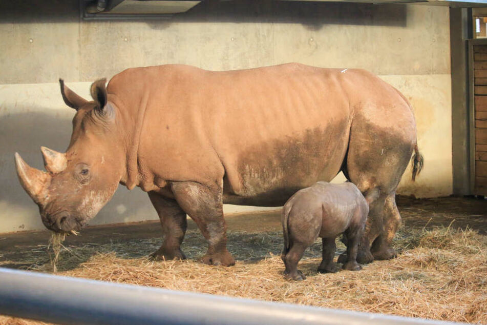 Mama Marita war bei Kiano zum ersten Mal Mutter geworden.