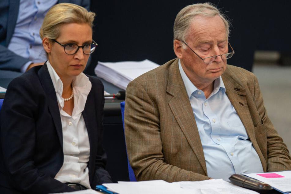 Alice Weidel (l.) und Alexander Gauland (r.) vertreten die AfD als Führungs-Duo im Bundestag.