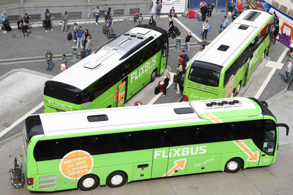 Busse des Unternehmens Flixbus stehen an einem Terminal für Fernbusse. (Archivbild)