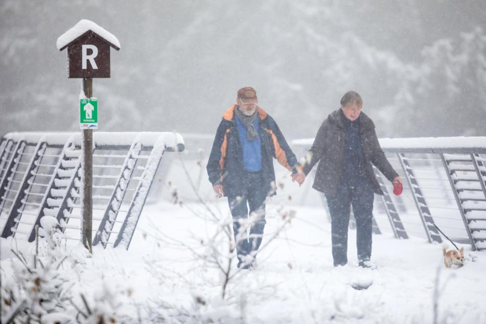 Diese Wanderer mussten am Rennsteig durch den Schnee stapfen.