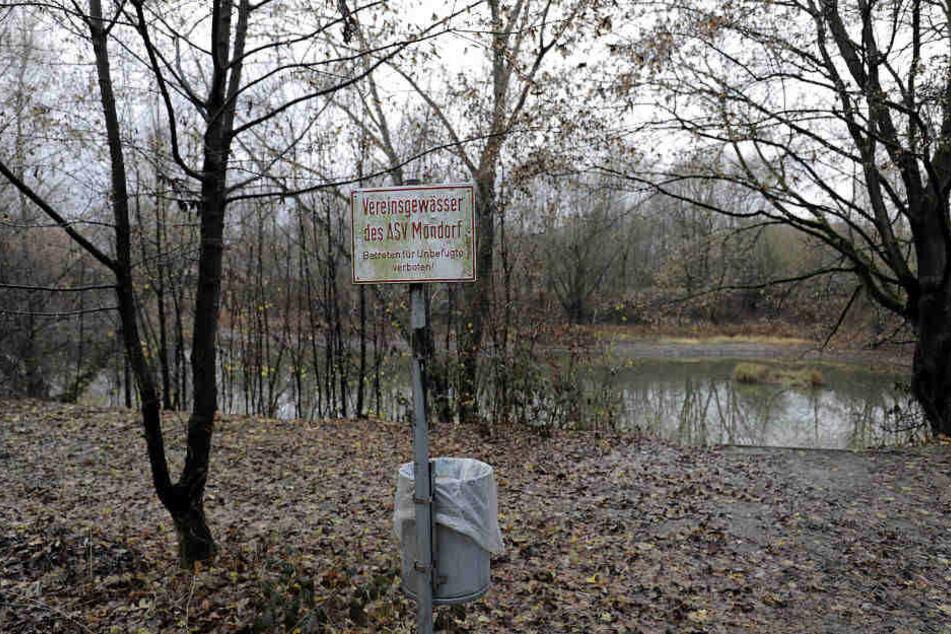 An diesem See wurden Kleidung und Handtasche der getöteten 17-Jährigen gefunden.