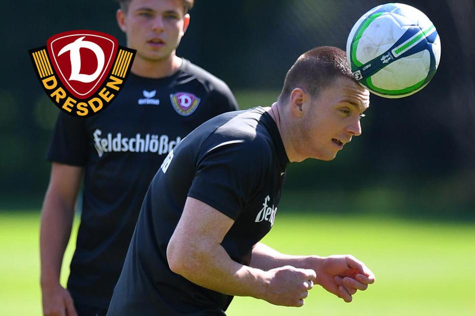 Neuzugang Duljevic will mit Dynamo aufsteigen