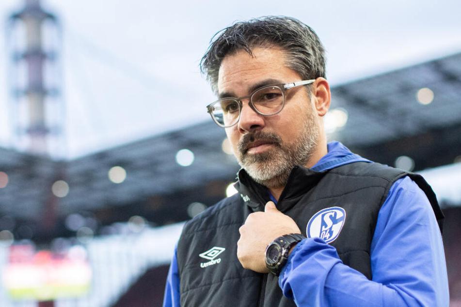 Schwere Nummer derzeit: Schalke-Coach David Wagner (48) hat momentan alle Hände voll zu tun.
