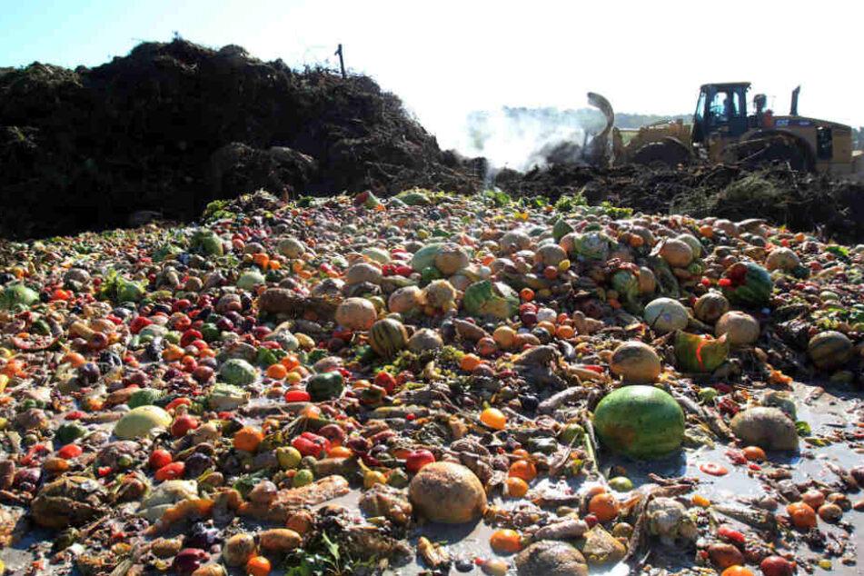 Die Lebensmittelverschwendung hat immense Ausmaße angenommen.