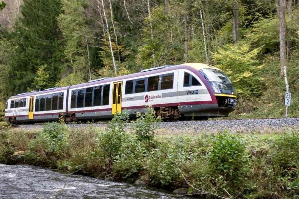 Das schlechte Streckennetz und die teils wildgewachsene Vegetation führten zu Schäden bei der Städtebahn Sachsen.