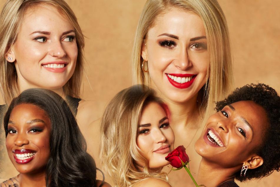 "Bachelor: ""Der Bachelor"": Fünf Kandidatinnen mit Corona-Pech!"