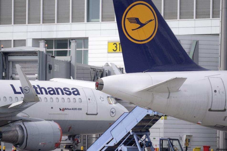 Bei der Lufthansa sind erste Finanzmittel aus der deutschen Staatshilfe eingetroffen. (Symbolbild)