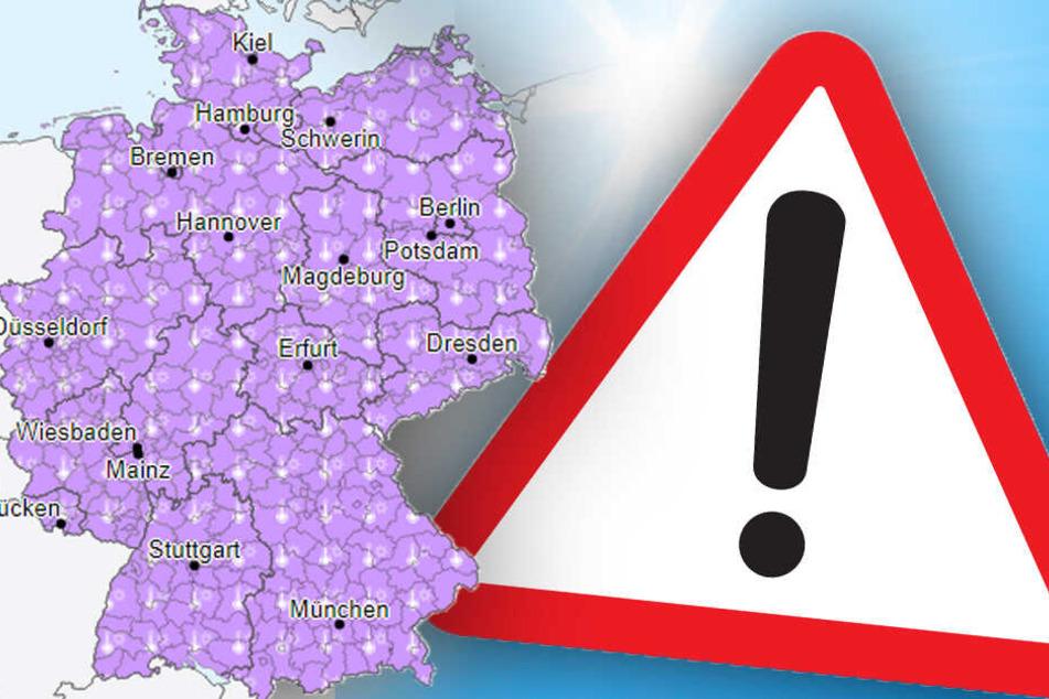 Bis zu 41 Grad! Deutschland wappnet sich für brutale Hitzewelle