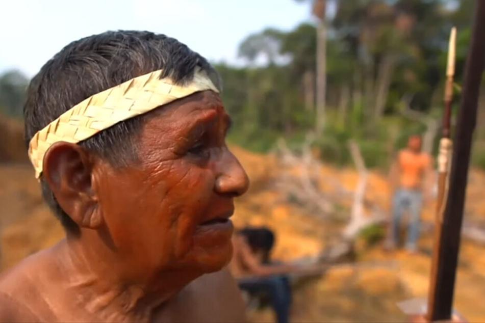 Verlorenes Paradies: Die Heimat des Mura-Anführers Raimundo Praia Belem ist eine der artenreichsten Regionen der Erde.