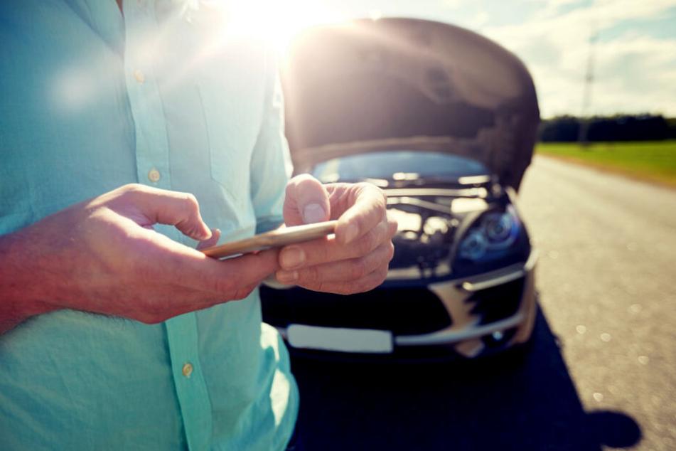Blinder Passagier: Autofahrer kann nicht fassen, was sich im Motorraum versteckt