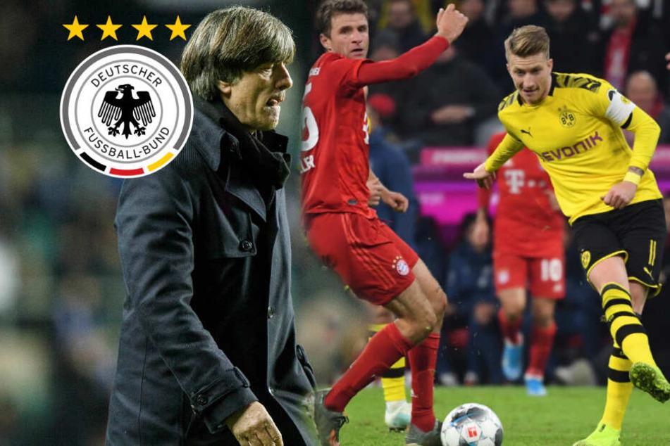 BVB-Kapitän Marco Reus nicht zur DFB-Elf: Er sagt Jogi Löw ab