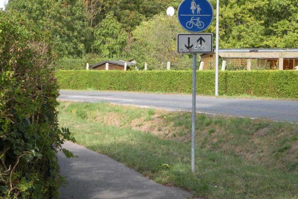 Der Radweg an der Stötteritzer Landstraße.