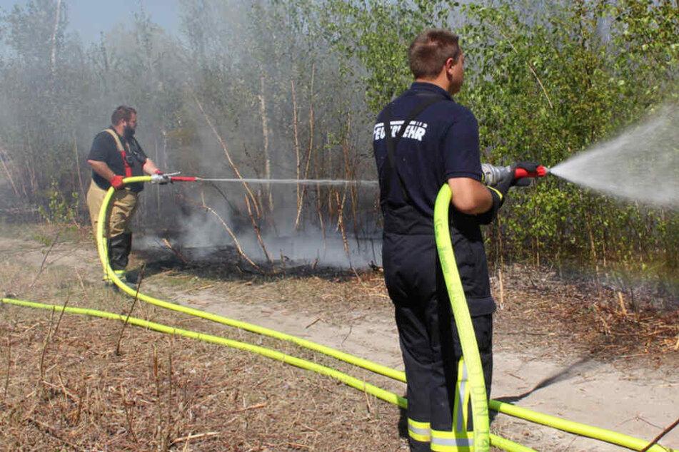 Hier löscht die Feuerwehr den nächsten Sachsen-Brand