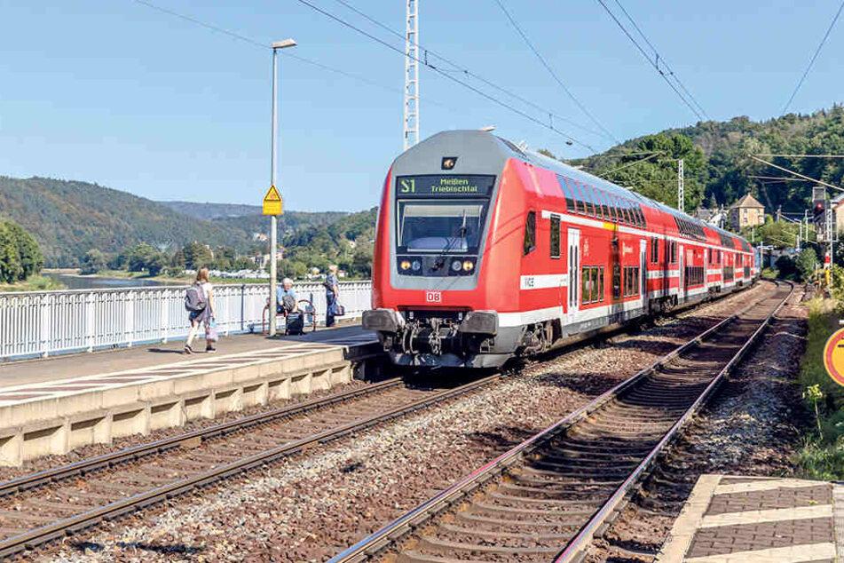 Die S-Bahn erfreut sich im Großraum Dresden immer größerer Beliebtheit. Zusätzliche Züge sollen den Ansturm bewältigen.