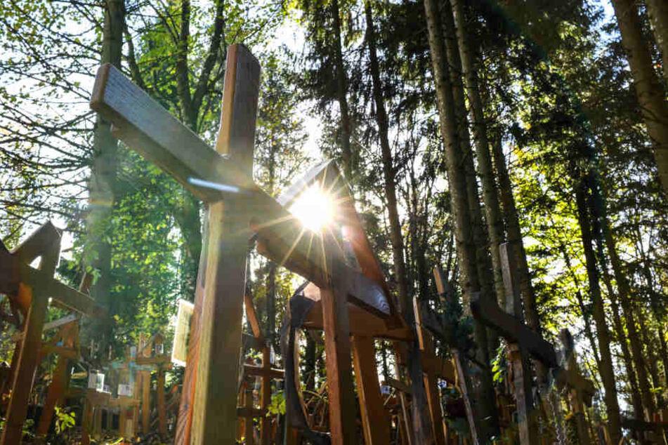 Schaurig-schön: Hier steht der Friedhof der Grabkreuze