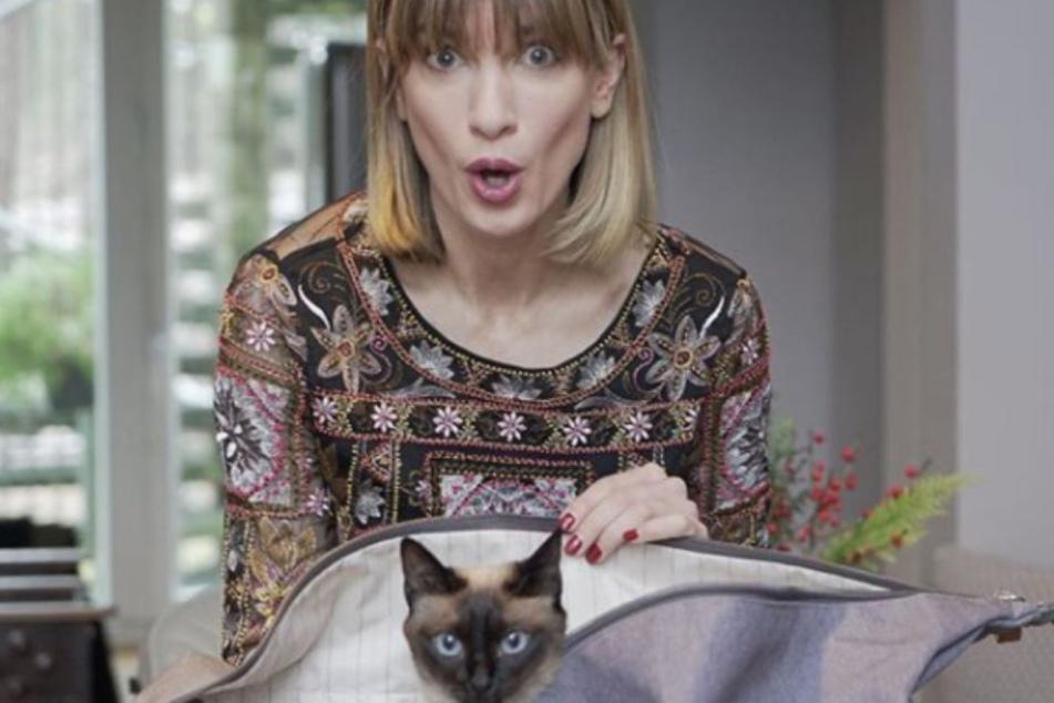 Auch zwei Katzen leben mit Isabell in ihrem Haus.