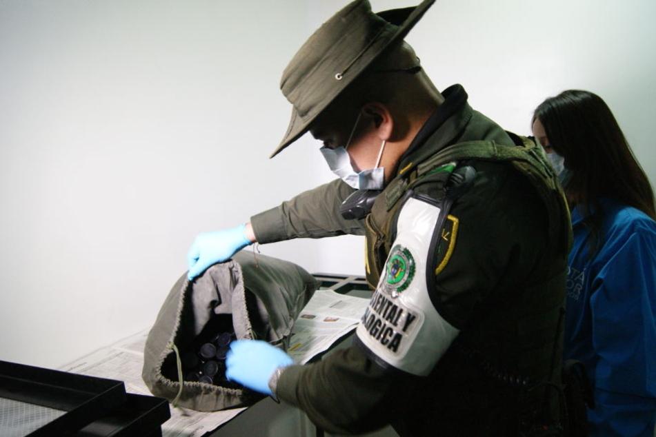 Ein Mitarbeiter der kolumbianischen Umweltbehörde durchsucht eine Tasche.