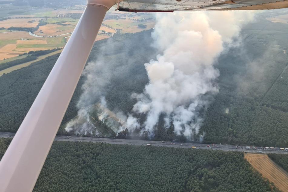 Direkt neben der A7 brannte der Wald.