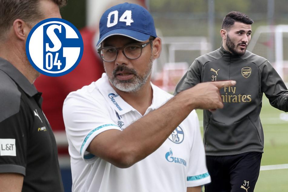 Schalke-Heimkehr von Kolasinac geplatzt? Bundesligist funkt wohl dazwischen!