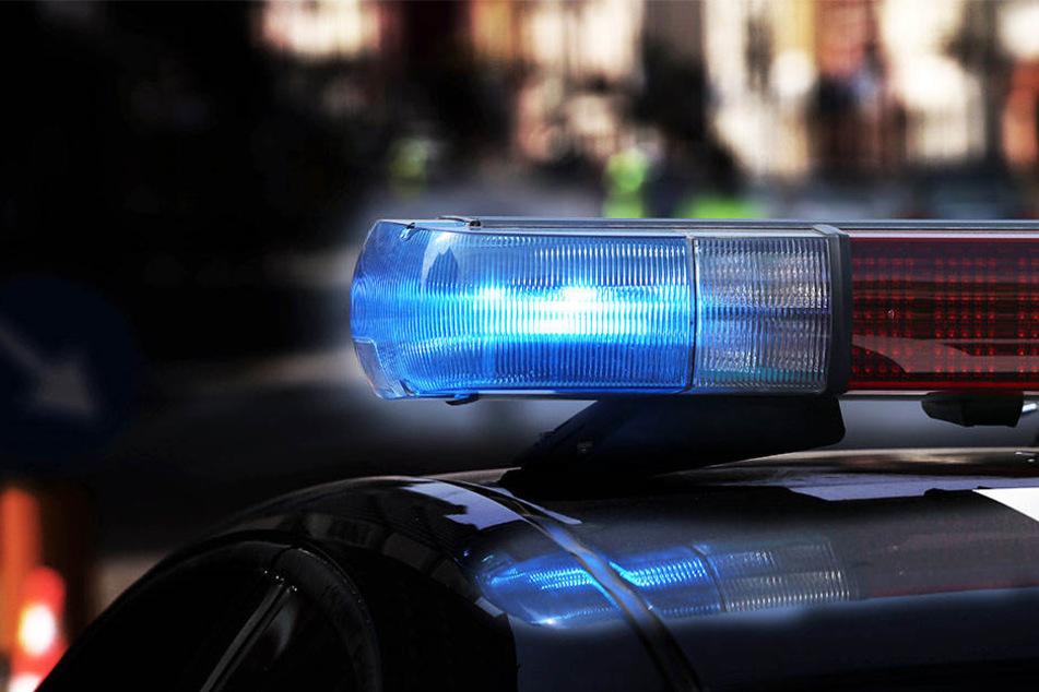 Noch bevor die Täter fliehen konnten, wurden sie von der Polizei überwältigt.