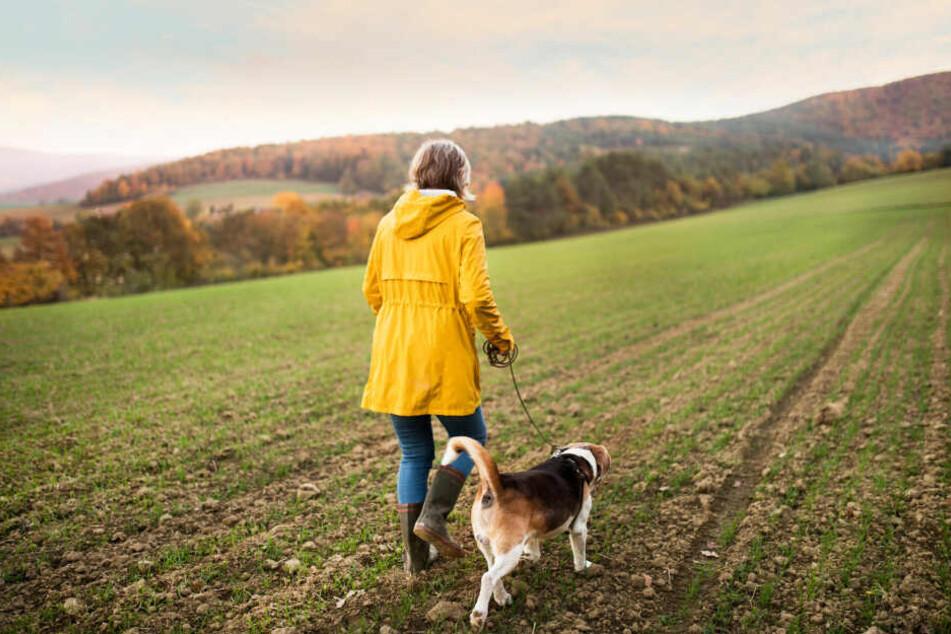 Helle Kleidung hilft Hundeführern bei Dunkelheit, von anderen gut erkannt zu werden.