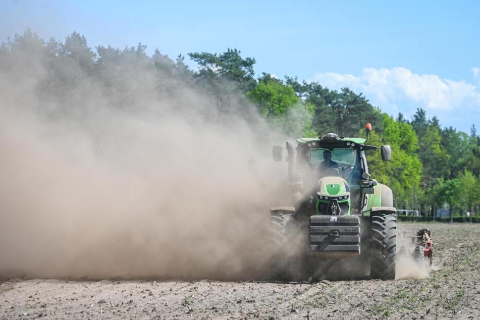 Die Arbeit vieler Landwirte in Sachsen ist derzeit vor allem eines: staubig!