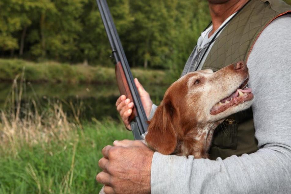 Der Jäger behauptet, sein Hund habe das Gewehr ausgelöst. (Symbolbild)