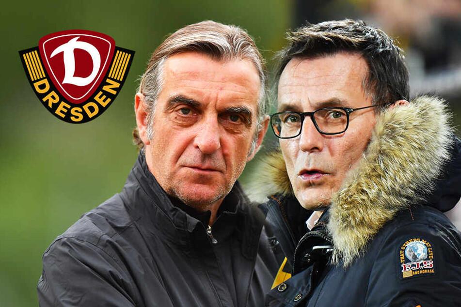 Dynamo Dresden sucht dritten Geschäftsführer! Wird es ein Minge-Kumpel?