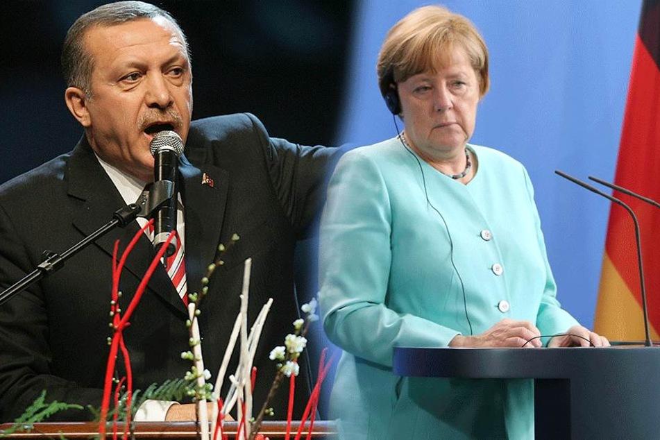 Der G20-Gipfel birgt viele Konflikte: Neben Erdogan (63) muss Angela Merkel (62, CDU) auch mit Donald Trump (71) Gespräche führen.