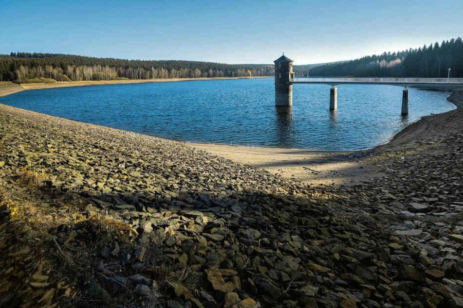 Niedrigwasser: So sah es noch im November an der Trinkwassertalsperre Cranzahl aus. Mittlerweile ist sie wieder gut gefüllt - wie die meisten Talsperren in Sachsen.