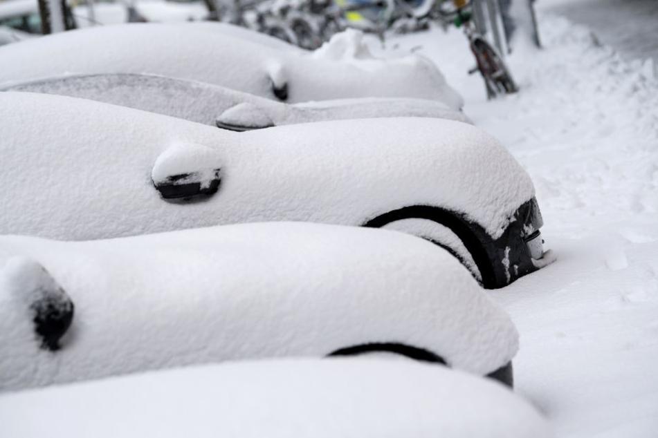Am Alpenrand sollen bis Montag 40cm Neuschnee dazu kommen.