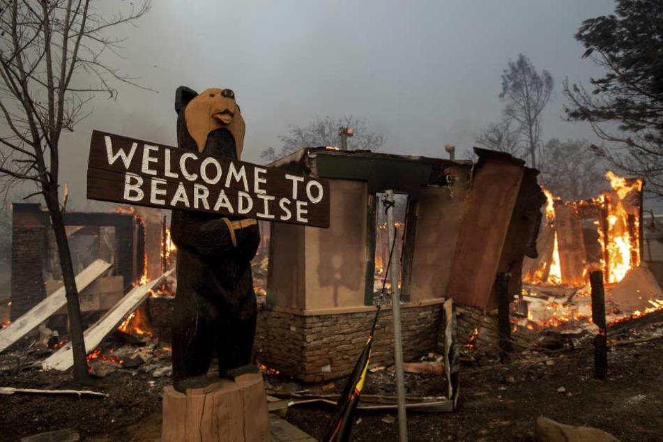 Tausende Kalifornier waren am Donnerstag von dem rasch um sich greifenden Buschfeuer geflüchtet.